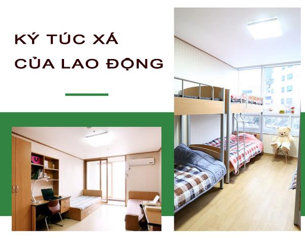 ktx lao dong dai loan