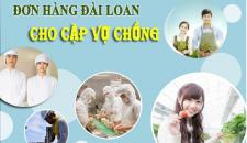 Các đơn hàng đi Đài Loan tuyển cặp vợ chồng mới nhất, lương cao